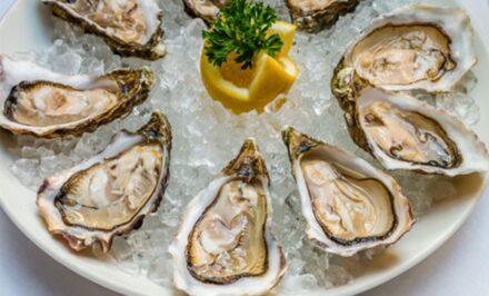 cork-oyster-festival